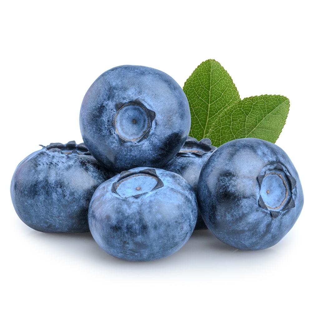European Bilberry