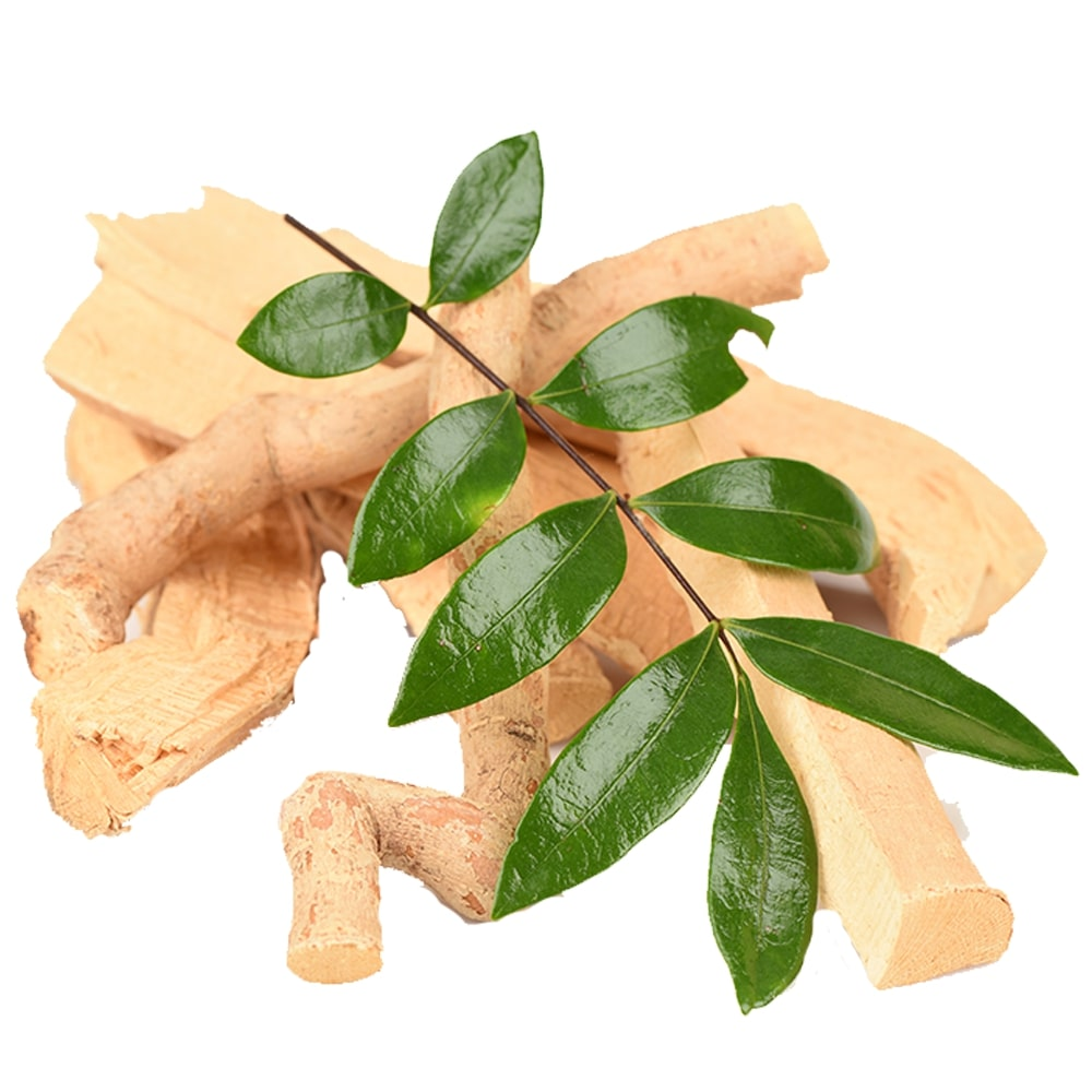 Eurycoma Longifolia (Tongkat Ali)